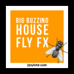 01-Big-Buzzing-House-Fly-Sound-Effect-tmb-150x150