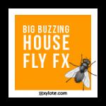 01-Big-Buzzing-House-Fly-Sound-Effect-tmb-150x150