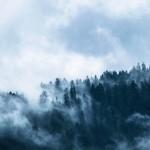 fog-1535201_1920-150x150
